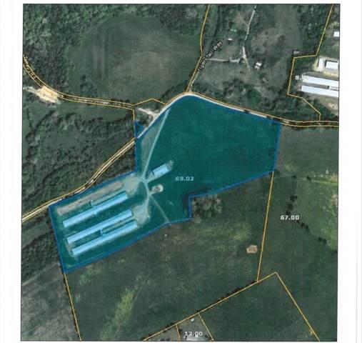 1267 Clear Creek Road, Parrotsville, TN 37843 (MLS #9903781) :: Highlands Realty, Inc.