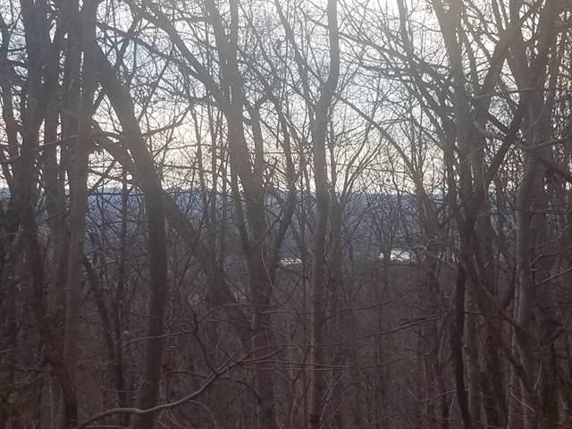 141 Chelaque Way, Mooresburg, TN 37811 (MLS #9903801) :: Conservus Real Estate Group