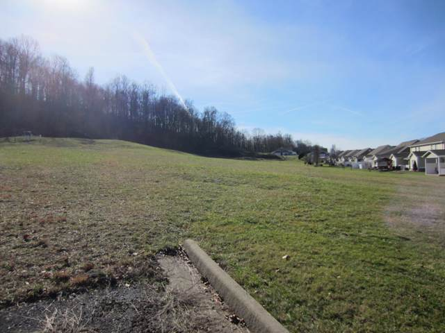 Tbd Wallace Meadows Way, Bristol, VA 24202 (MLS #9903846) :: Highlands Realty, Inc.