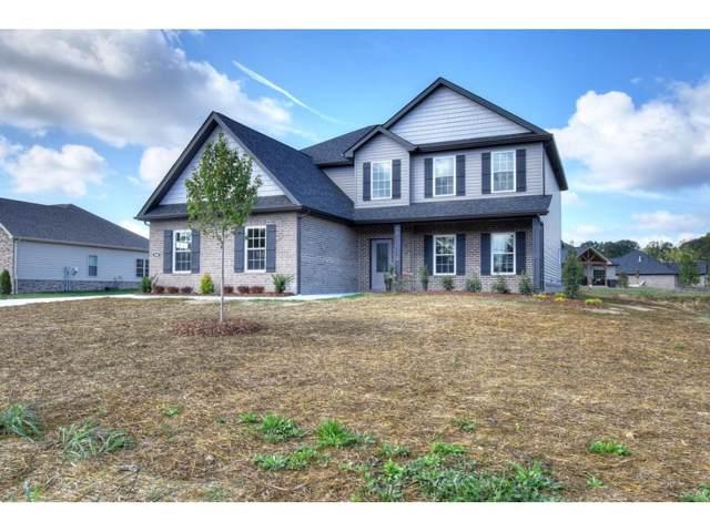 1097 Panoramic Vista Road, Gray, TN 37615 (MLS #9903874) :: Conservus Real Estate Group