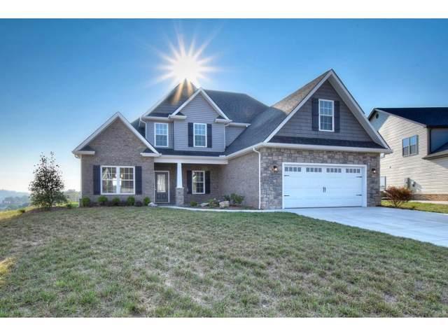 1109 Panoramic Vista, Gray, TN 37615 (MLS #9903875) :: Conservus Real Estate Group