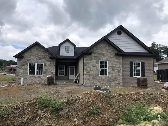 1120 Panoramic Vista, Gray, TN 37615 (MLS #9903876) :: Conservus Real Estate Group