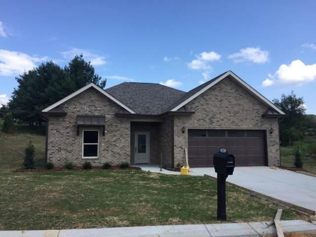 1391 Osler Court, Piney Flats, TN 37686 (MLS #9903890) :: Conservus Real Estate Group