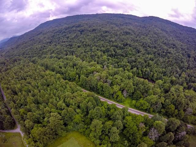 0 Cave Springs Road, Dryden, VA 24243 (MLS #9903895) :: Conservus Real Estate Group