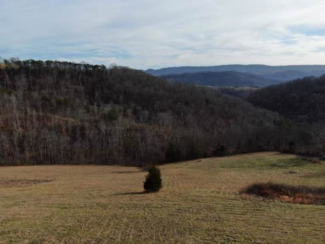 1589 Raven Hill Road, Tazewell, TN 37879 (MLS #9904077) :: Conservus Real Estate Group