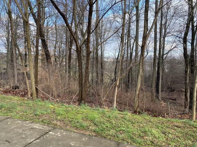 102 Chestnut Ridge Drive, Jonesborough, TN 37659 (MLS #9904091) :: Conservus Real Estate Group