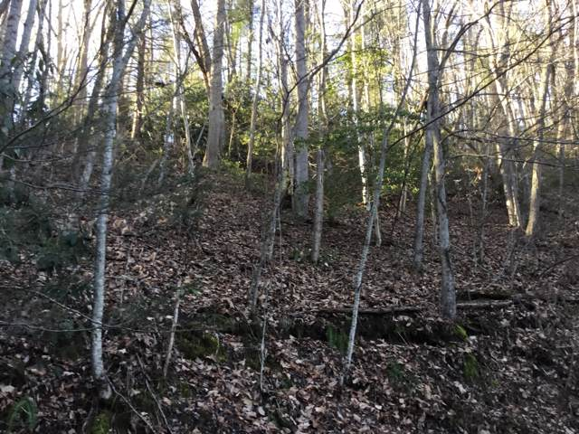 Tbd Banjo Ridge Road, Butler, TN 37640 (MLS #9904113) :: Highlands Realty, Inc.