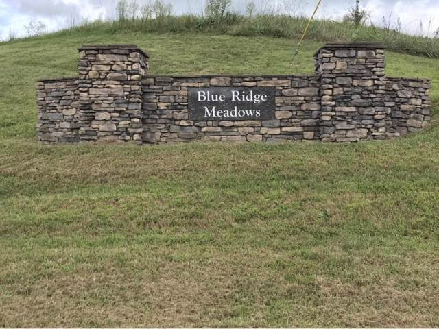 00 Katie Lane, Chuckey, TN 37641 (MLS #9904134) :: Bridge Pointe Real Estate