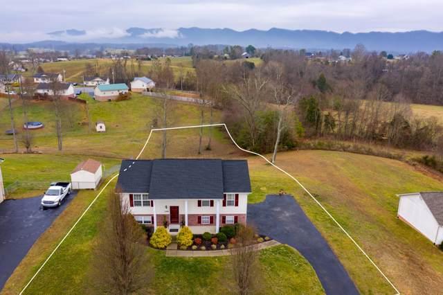 249 Mockingbird Place, Jonesborough, TN 37659 (MLS #9904202) :: Conservus Real Estate Group