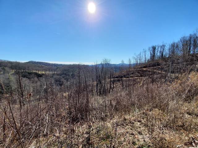 00 Carvers Knob Road, Little Switzerland, NC 28749 (MLS #9904247) :: Red Door Agency, LLC