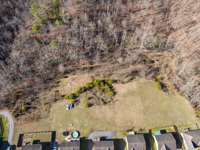 Tbd Austin Springs Rd S Road, Johnson City, TN 37601 (MLS #9904278) :: Conservus Real Estate Group