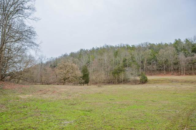 Tbd Hunters East Vly Road, Dungannon, VA 24245 (MLS #9904345) :: Conservus Real Estate Group