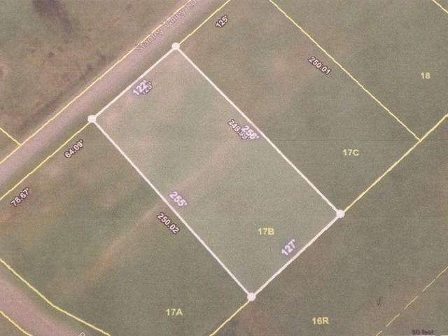 Lot 17b Stanley Valley Road, Rogersville, TN 37857 (MLS #9904378) :: Conservus Real Estate Group