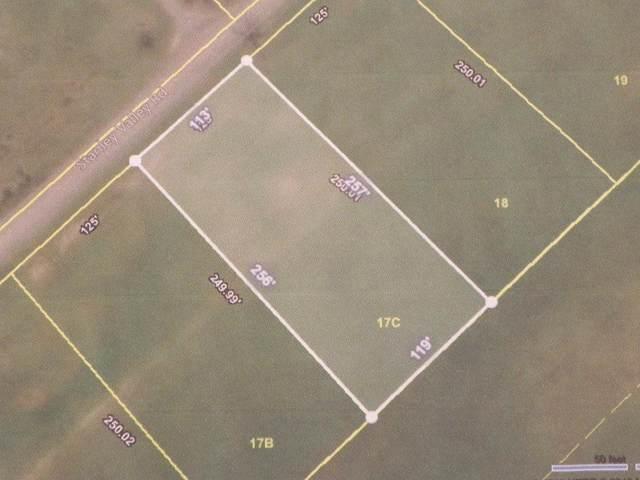 Lot 17c Stanley Valley Road, Rogersville, TN 37857 (MLS #9904379) :: Conservus Real Estate Group
