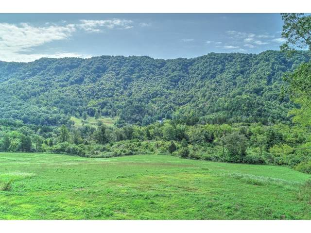 2519 Clinch Mountain Road, Eidson, TN 37731 (MLS #9904390) :: Conservus Real Estate Group