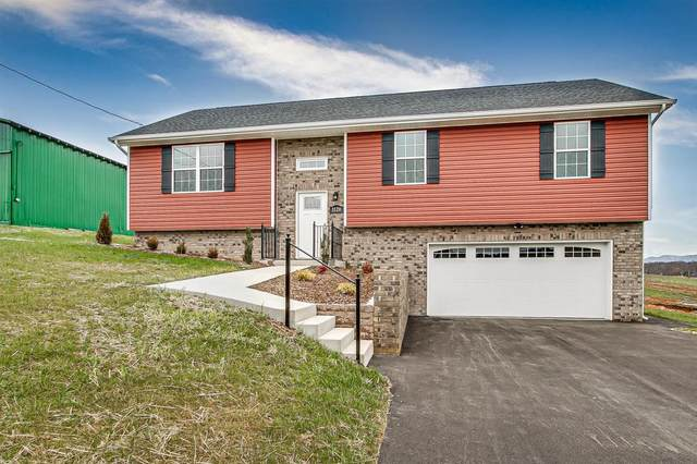 1120 Henderson Court, Jonesborough, TN 37659 (MLS #9904497) :: Conservus Real Estate Group