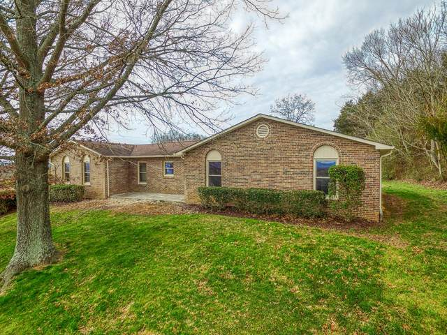 315 Plainview Heights Circle, Greeneville, TN 37745 (MLS #9904519) :: Conservus Real Estate Group