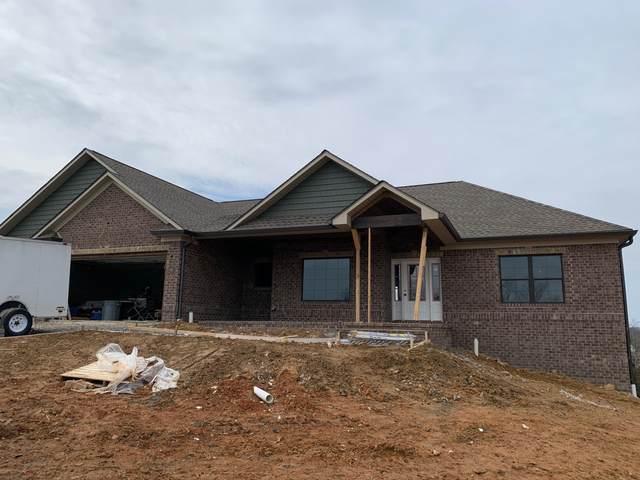 1290 Panoramic Vista, Gray, TN 37615 (MLS #9904537) :: Conservus Real Estate Group