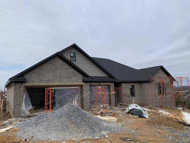 1274 Panoramic Vista, Gray, TN 37615 (MLS #9904546) :: Conservus Real Estate Group