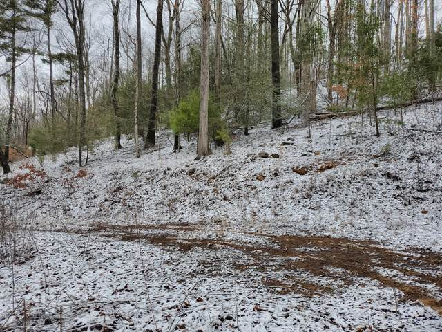 Tbd Hickory Hills Lane Lane, Butler, TN 37640 (MLS #9904605) :: Conservus Real Estate Group