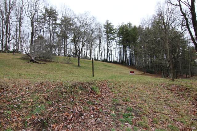 000 Berry Branch Road, Mountain City, TN 37683 (MLS #9904606) :: Conservus Real Estate Group