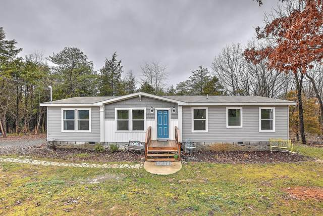 217 Fairhaven Road, Johnson City, TN 37601 (MLS #9904690) :: Conservus Real Estate Group