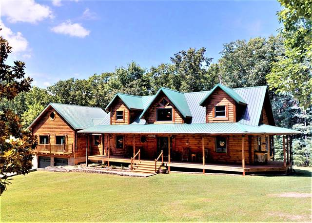 1075 Lightnen Road, Parrotsville, TN 37843 (MLS #9904713) :: Conservus Real Estate Group