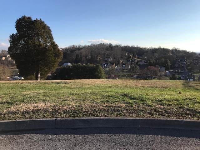 1081 Wellington Boulevard, Kingsport, TN 37660 (MLS #9904756) :: Highlands Realty, Inc.