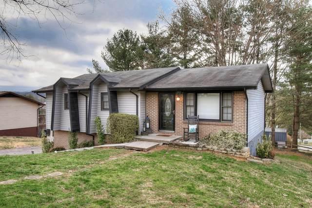 291 Bellehaven Drive, Bristol, VA 24201 (MLS #9904761) :: Conservus Real Estate Group