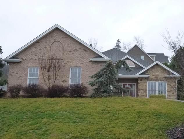 242 Old Island Trail, Kingsport, TN 37664 (MLS #9904773) :: Bridge Pointe Real Estate