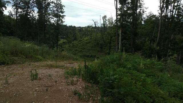 0 Davy Crockett Parkway, Morristown, TN 37813 (MLS #9904782) :: Conservus Real Estate Group