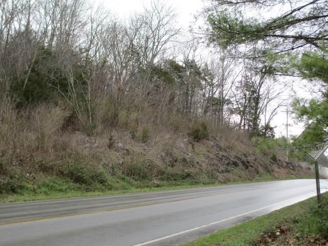 Tbd Blue Springs Parkway, Greeneville, TN 37743 (MLS #9904839) :: Bridge Pointe Real Estate