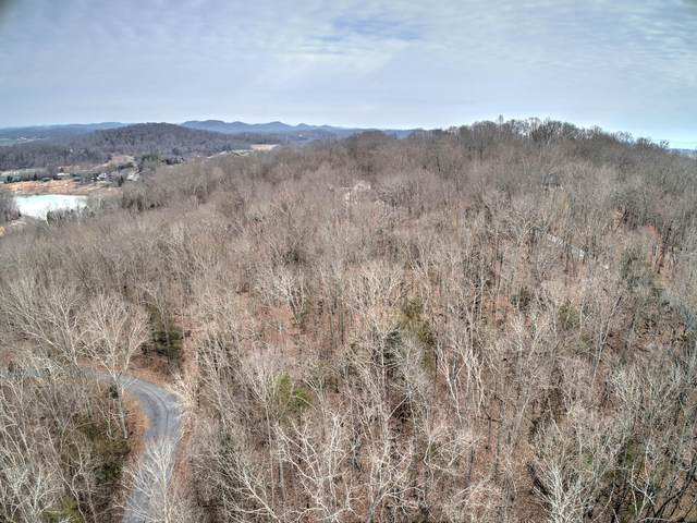 Tbd Lake Drive, Piney Flats, TN 37686 (MLS #9904894) :: Highlands Realty, Inc.