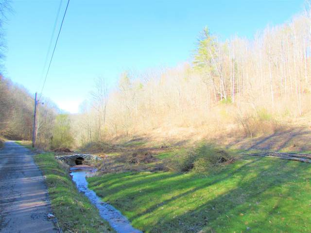 Tbd Opossum Hollow Road, Elizabethton, TN 37643 (MLS #9904957) :: Conservus Real Estate Group