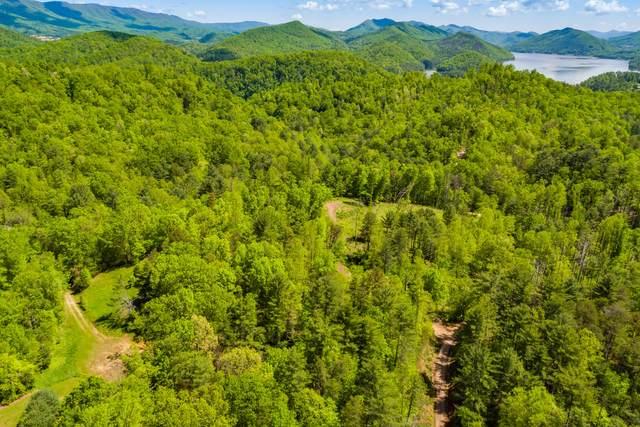 1002 Mount Carmel Drive, Butler, TN 37640 (MLS #9905006) :: Red Door Agency, LLC
