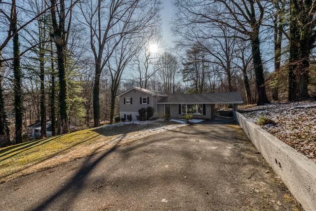 916 Beechwood Drive, Bristol, TN 37620 (MLS #9905015) :: Highlands Realty, Inc.