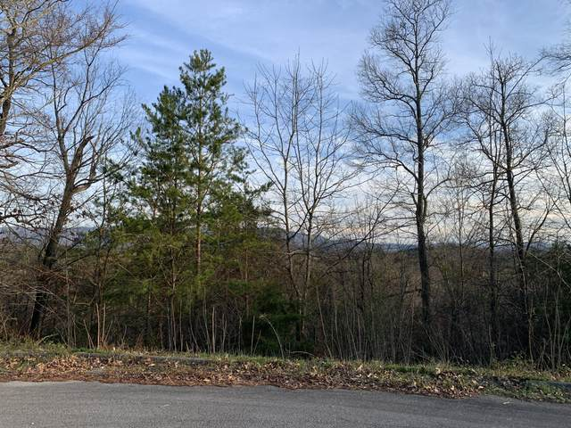 Tbd Dominique Lane, Greeneville, TN 37743 (MLS #9905044) :: Highlands Realty, Inc.