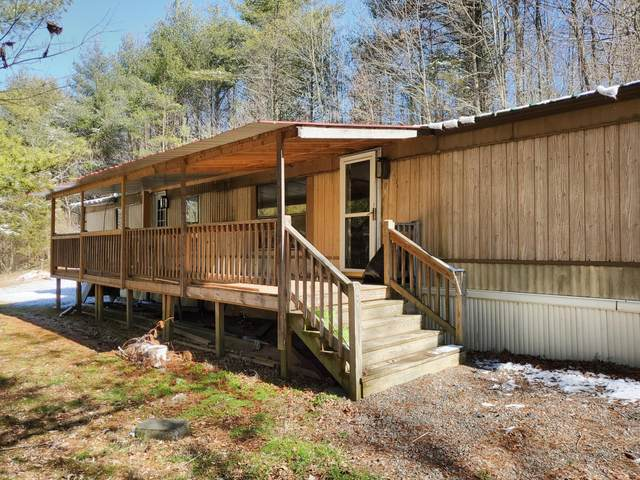 6126 Highway 91, Mountain City, TN 37683 (MLS #9905073) :: Conservus Real Estate Group