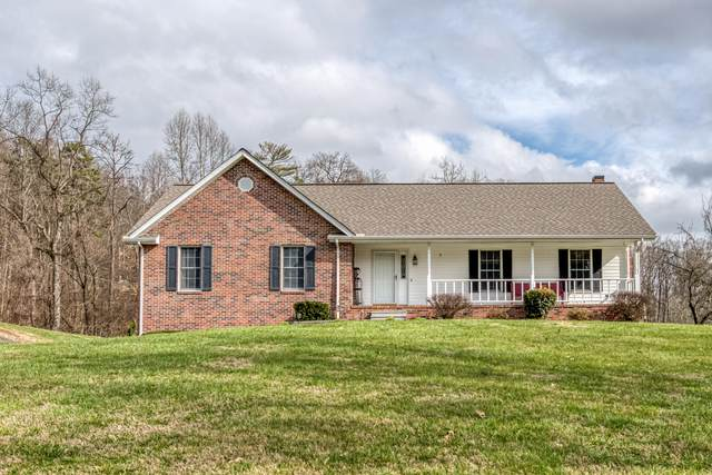 298 Greentree Drive, Blountville, TN 37617 (MLS #9905148) :: The Baxter-Milhorn Group