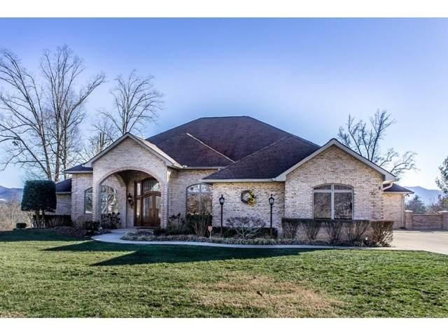 300 Golf Trace Drive, Greeneville, TN 37743 (MLS #9905188) :: Bridge Pointe Real Estate