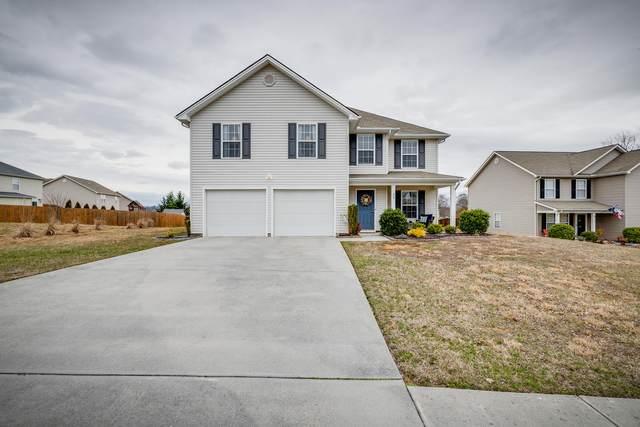 35 Glory Court, Jonesborough, TN 37659 (MLS #9905189) :: Bridge Pointe Real Estate