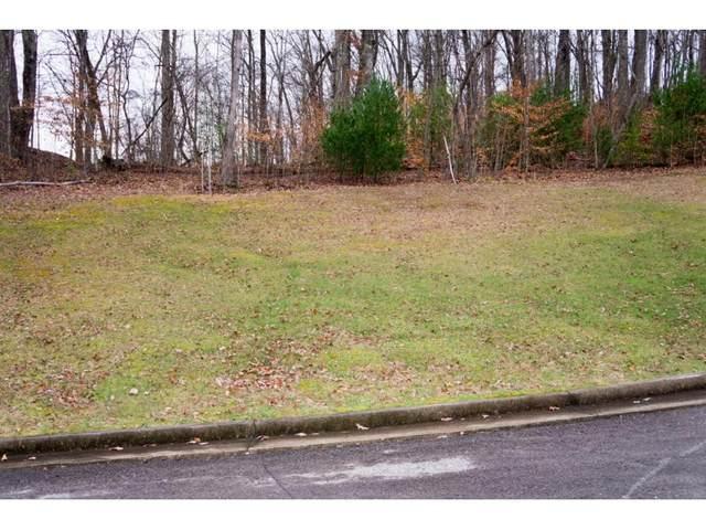 1 Serenity Ridge Trail, Bristol, TN 37620 (MLS #9905274) :: Conservus Real Estate Group