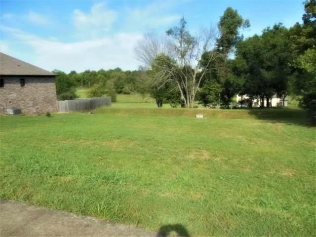 1076 Willow Springs Drive, Johnson City, TN 37604 (MLS #9905299) :: Bridge Pointe Real Estate