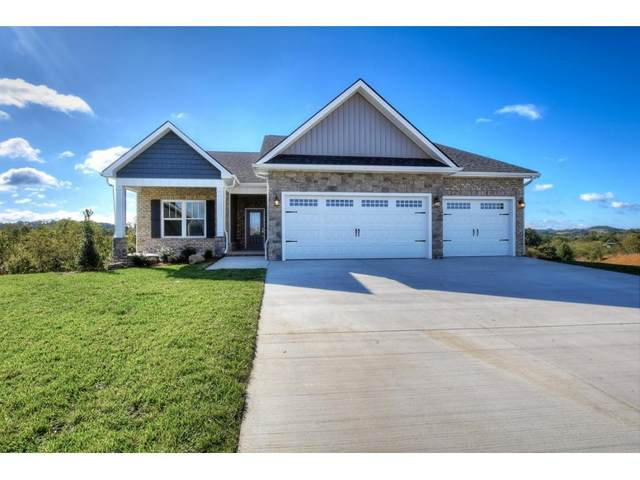 3337 Murrayfield Way, Kingsport, TN 37664 (MLS #9905328) :: Conservus Real Estate Group