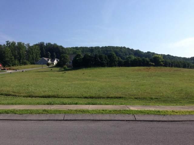 283 Old Island Trail, Kingsport, TN 37664 (MLS #9905513) :: Highlands Realty, Inc.