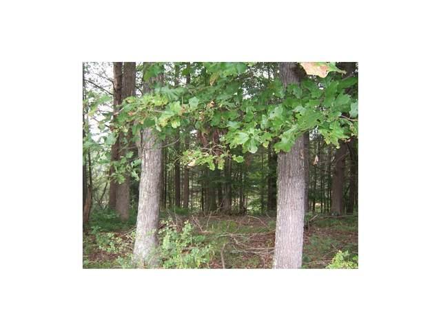 0 Lake Pointe Drive Lots 4 & 4A, Abingdon, VA 24211 (MLS #9905697) :: Red Door Agency, LLC