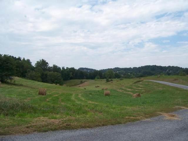 0 Lake Pointe Drive, Lot 21, Abingdon, VA 24211 (MLS #9905703) :: Highlands Realty, Inc.