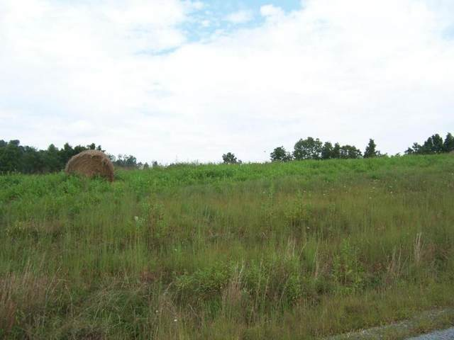 0 Lake Bend Court, Lot 30, Abingdon, VA 24211 (MLS #9905708) :: Highlands Realty, Inc.