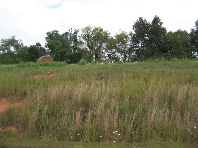 0 Lake Bend Court, Lot 32, Abingdon, VA 24211 (MLS #9905710) :: Highlands Realty, Inc.