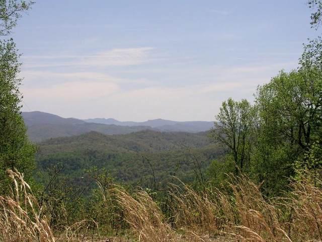 606 Tulip Poplar Trail, Butler, TN 37640 (MLS #9905717) :: Highlands Realty, Inc.